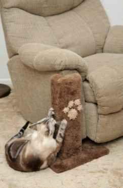 This sofa saver.