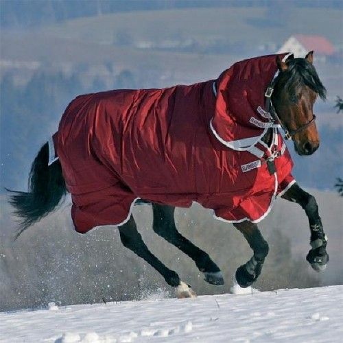 Rambo Plus Turnout Heavy Horse Rugs