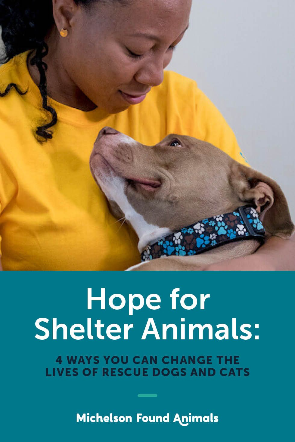 Hope for Shelter Animals 4 Ways You Can Change the Lives