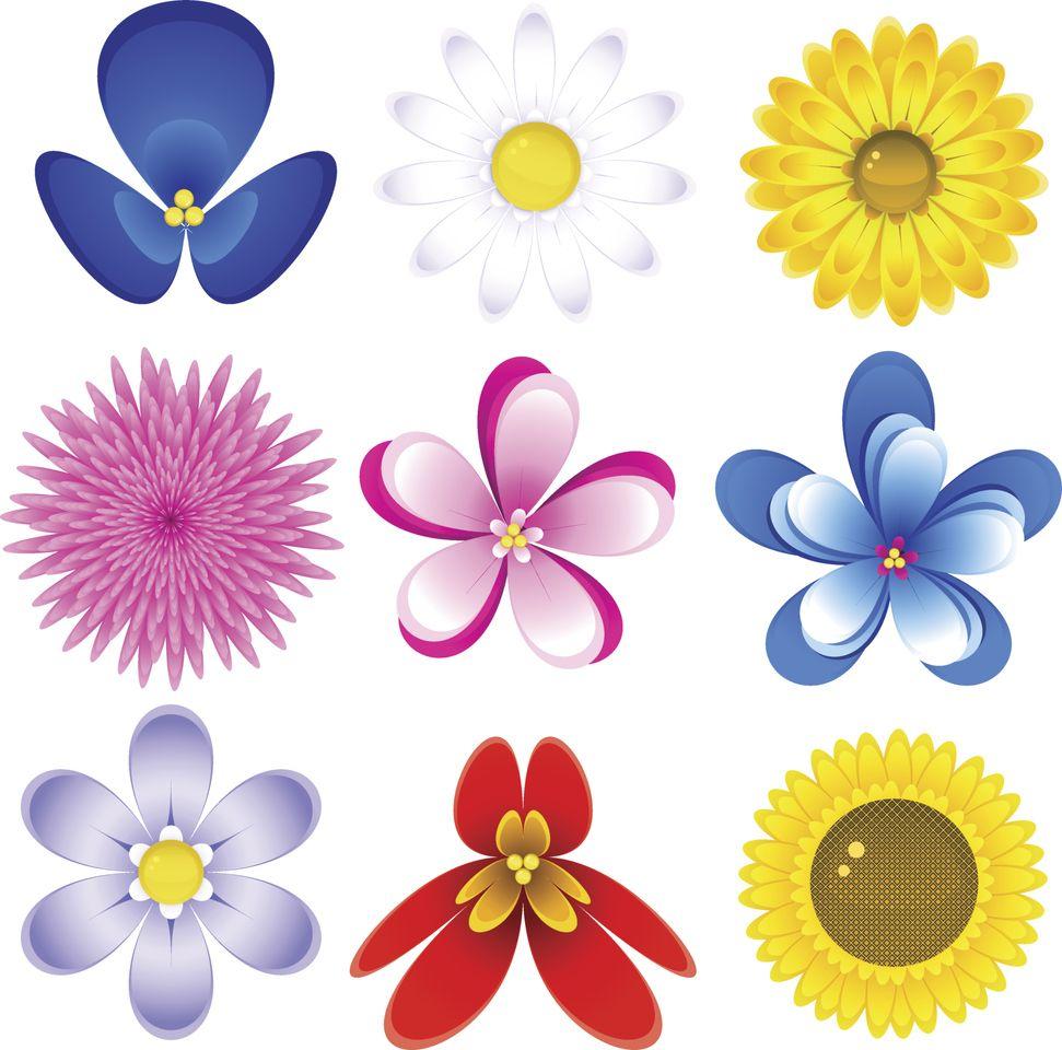 Moldes De Flores Para Imprimir Desenhos De Flores Molde