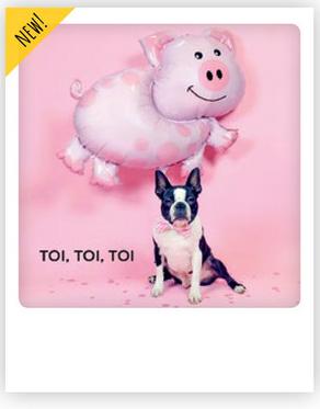 TOI, TOI, TOI Bulldogge Karte Lustig.