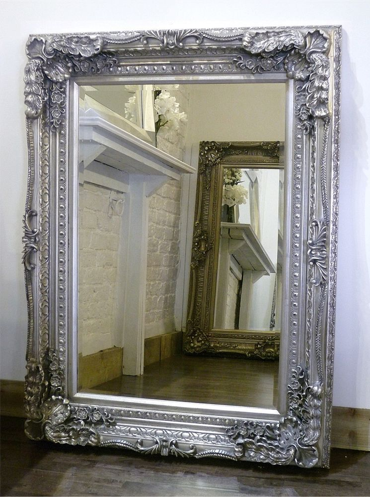 Pin by Emelyn McLeod on fancy mirrors   Antique mirror ...