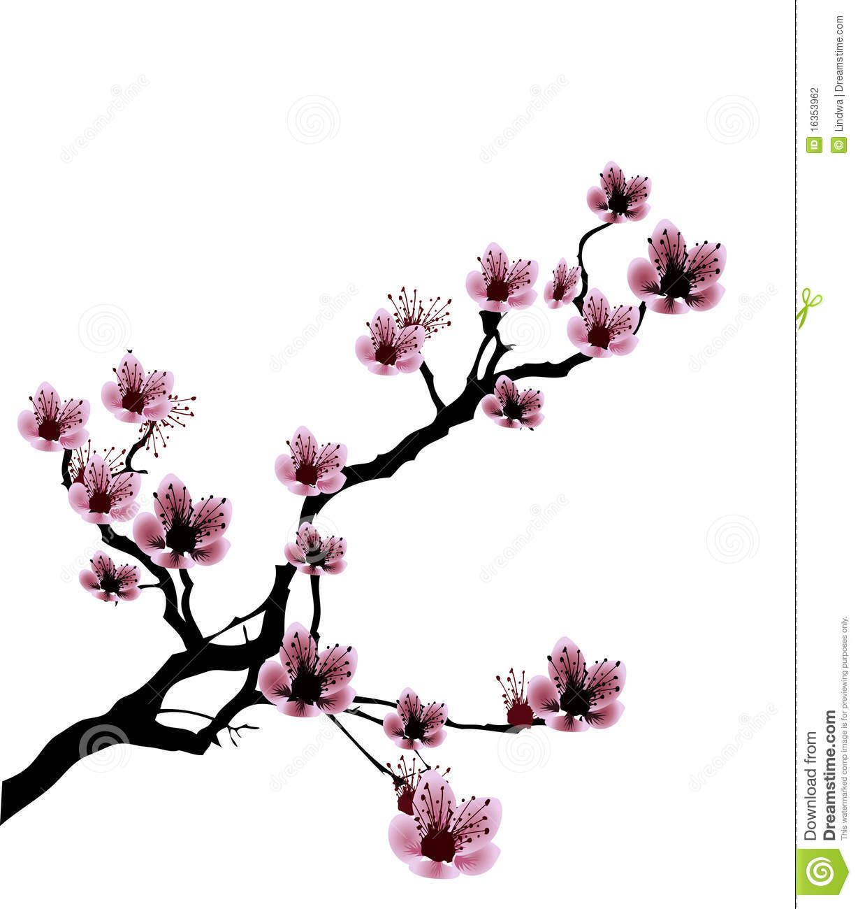 Cherry Blossom Tree Black And White: Black And White Cherry Blossom Drawings