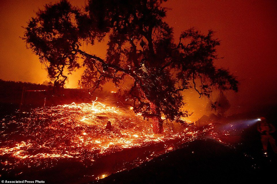 Fires North Of Los Angeles Force 50 000 To Flee As Wine Country Burns In 2020 Fire Wine Country Forest Fire