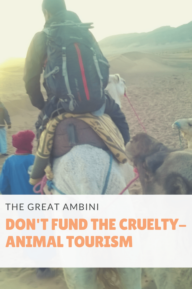 Animal Tourism - Don't Fund The Cruelty