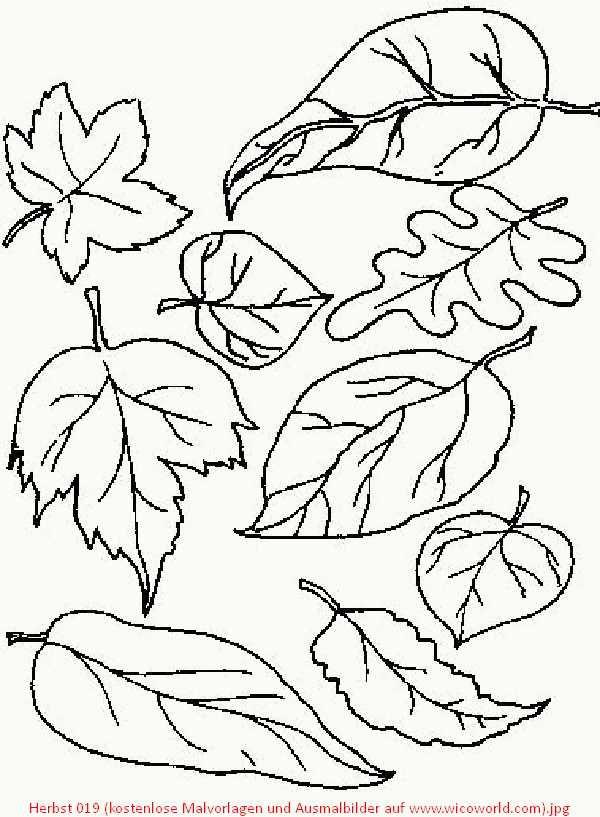 Herbst 019 (kostenlose Malvorlagen und Ausmalbilder auf