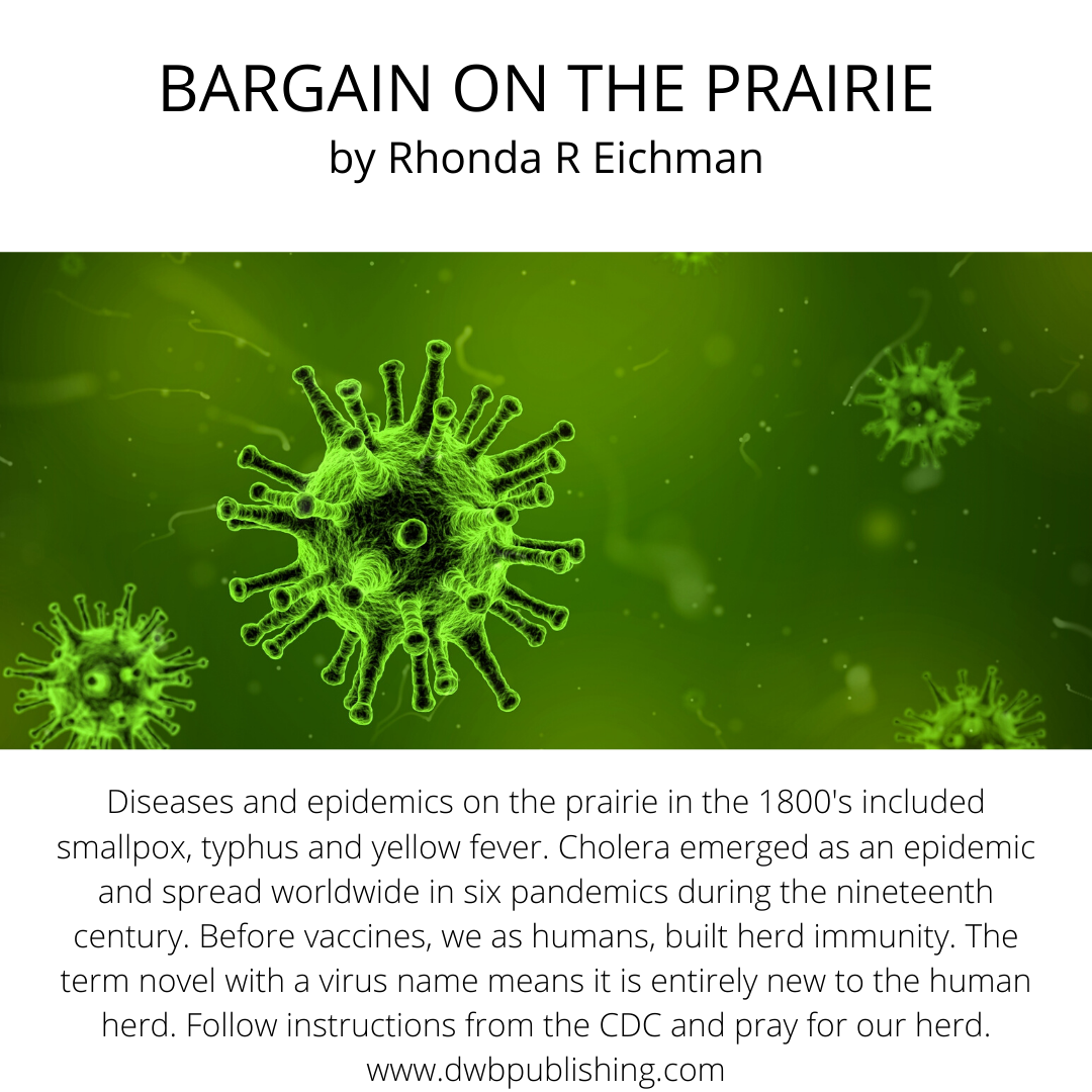 Prairie Facts In 2020 Historical Fiction Christian Fiction Fiction