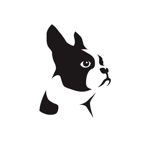 Boston Terrier Graphic Identity For The Boston Terrier Rescue On Behance Jpg 600 600 Boston Terrier Tattoo Boston Terrier Art Boston Terrier Rescue