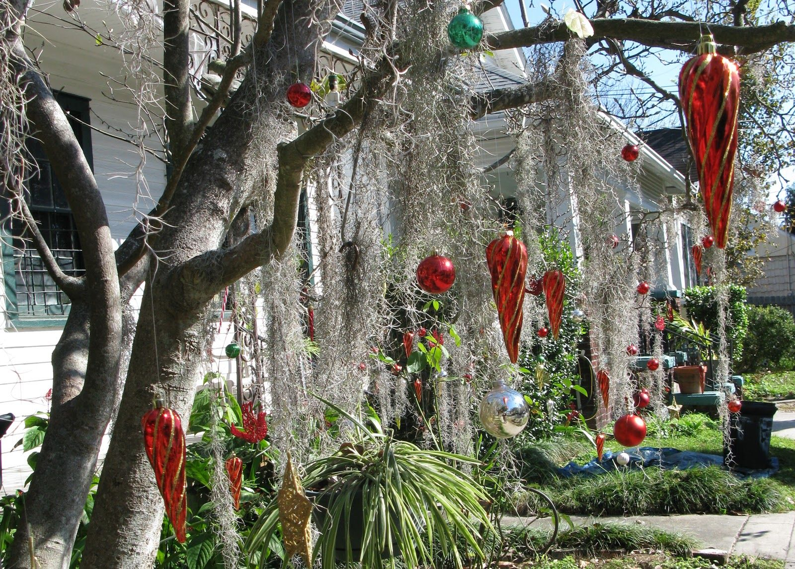 New Orleans Christmas Decorations | always thought it was so cool to hang Christmas ornaments in the ...