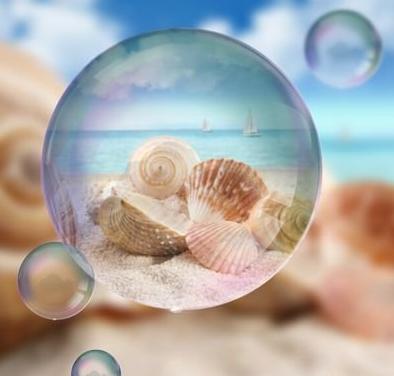 رؤية صدف البحر في المنام للعزباء In 2020 Olivia Baker Blog Posts