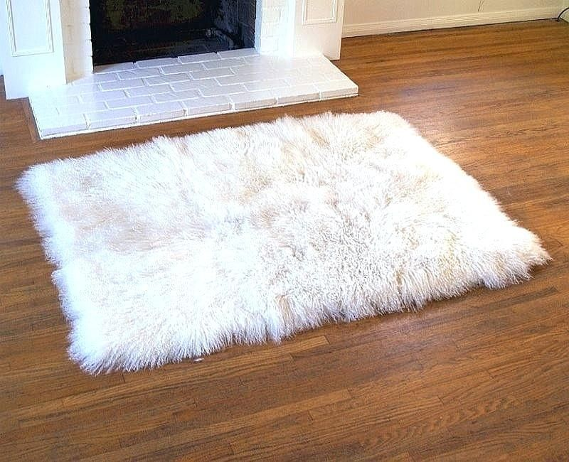 Good Small White Rug Arts Inspirational Small White Rug Or Originalviews 94 Small Round White Fur Rug C In 2020 Plush Area Rugs Furry Rugs White Area Rug Living Room