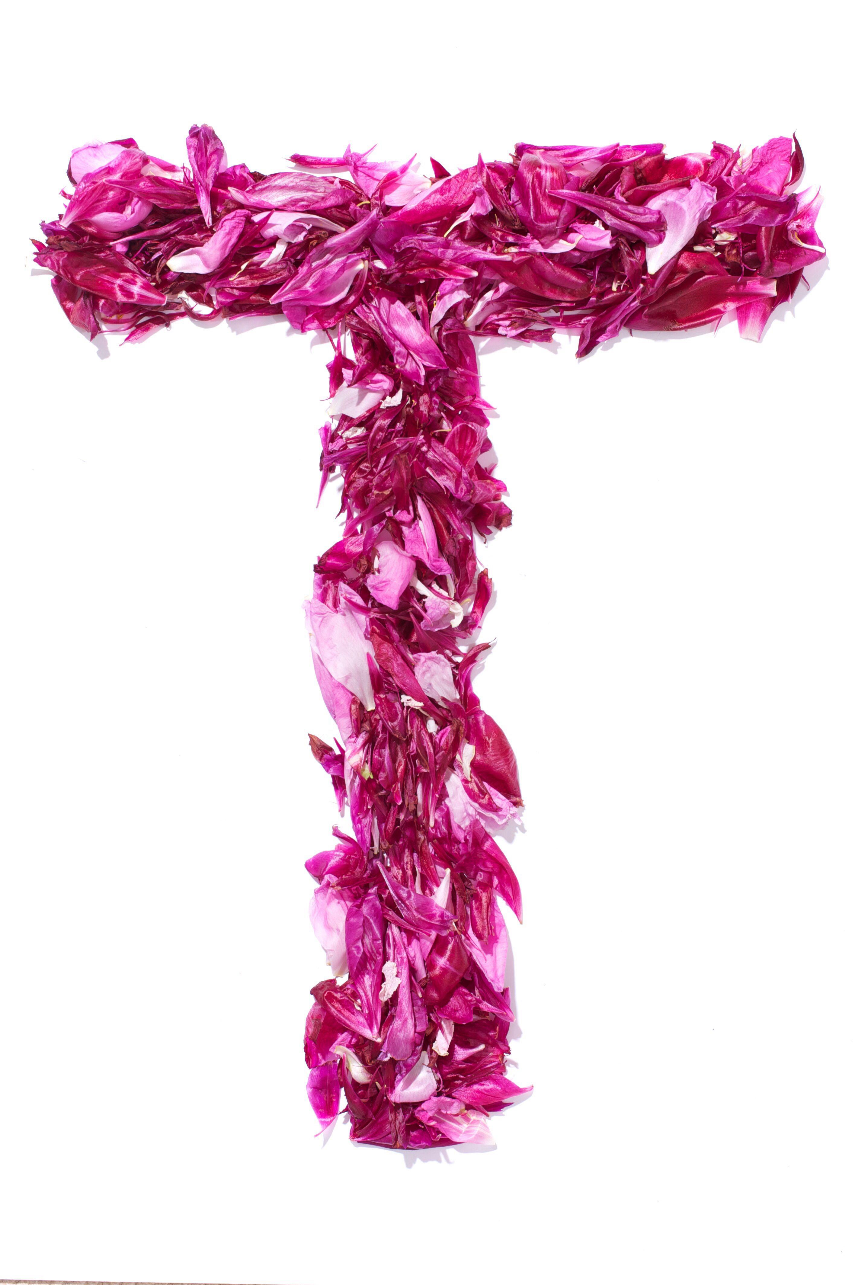 Pin By Thalyta Ellen On Alphabet Flower Alphabet Rose Frame Flowers