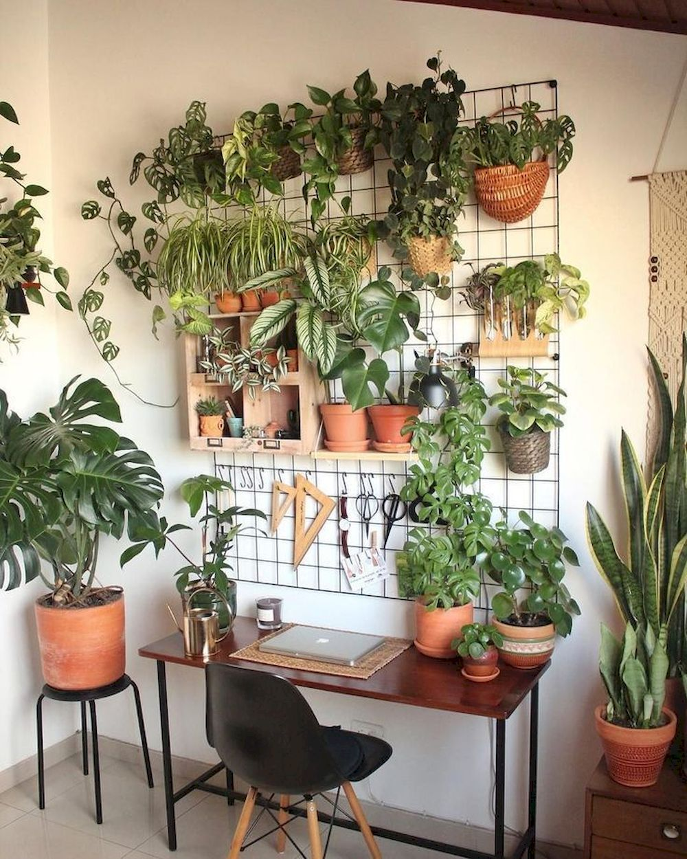 Beautiful Office Plants Without The Worry In 2020 Plant Decor