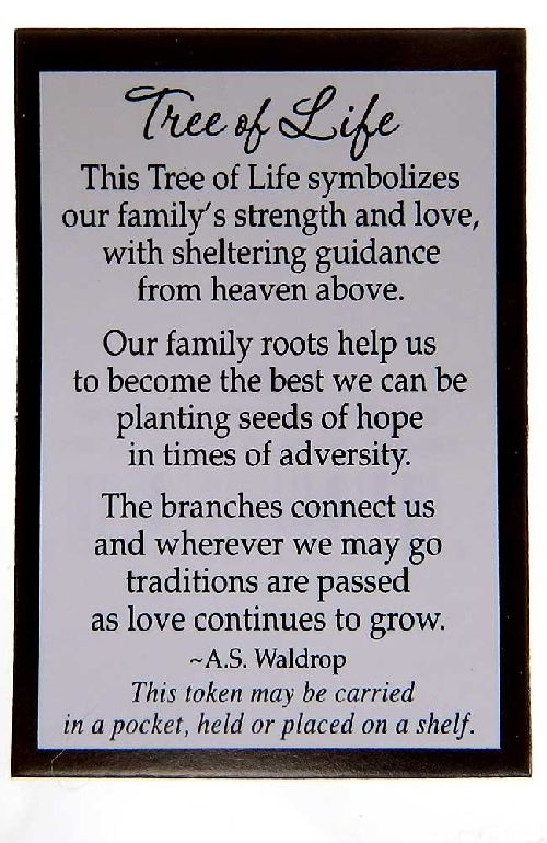 Tree Of Life Definition