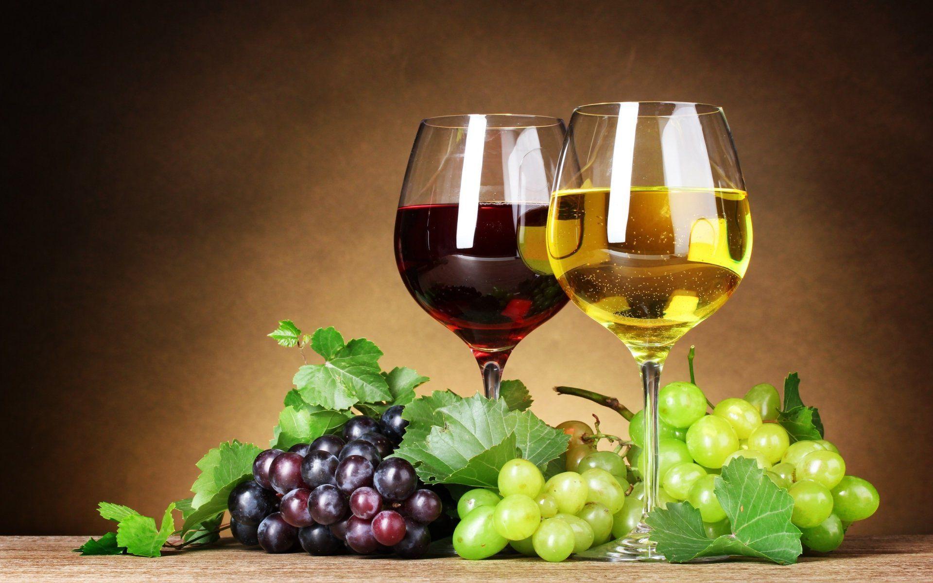 Weintraube / Grape + Obst - Früchte / Fruit