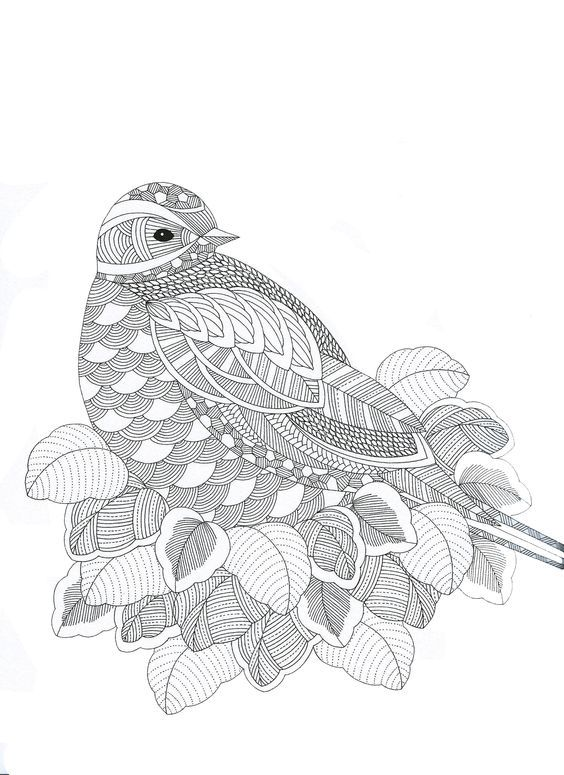 Abstract Bird Coloring Pages : Animaux fantastiques bird abstract doodle zentangle