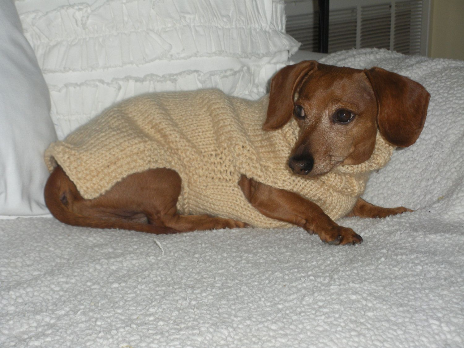 Knitting Pattern For Dog Coats For Small Dogs Images - handicraft ...