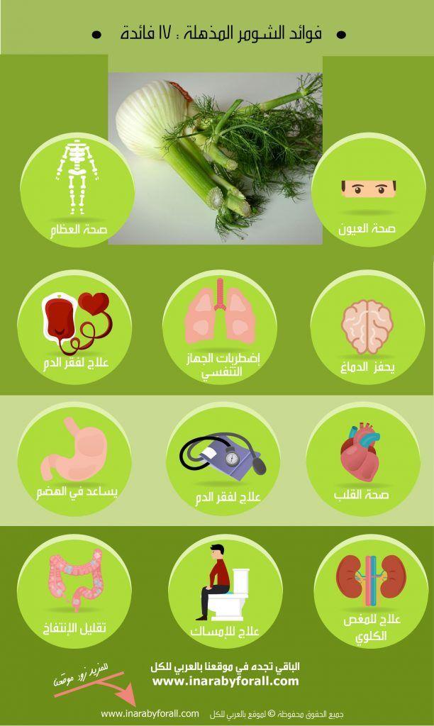 أنفوجرافيك فوائد الشومر Infografia