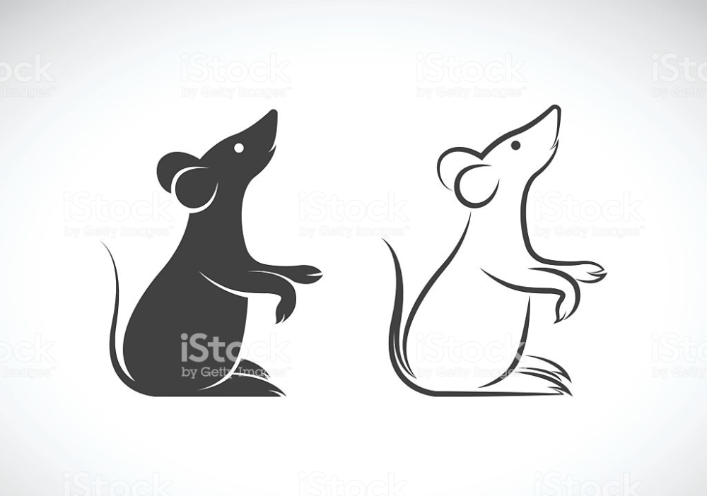 45+ Rat Black And White Clipart