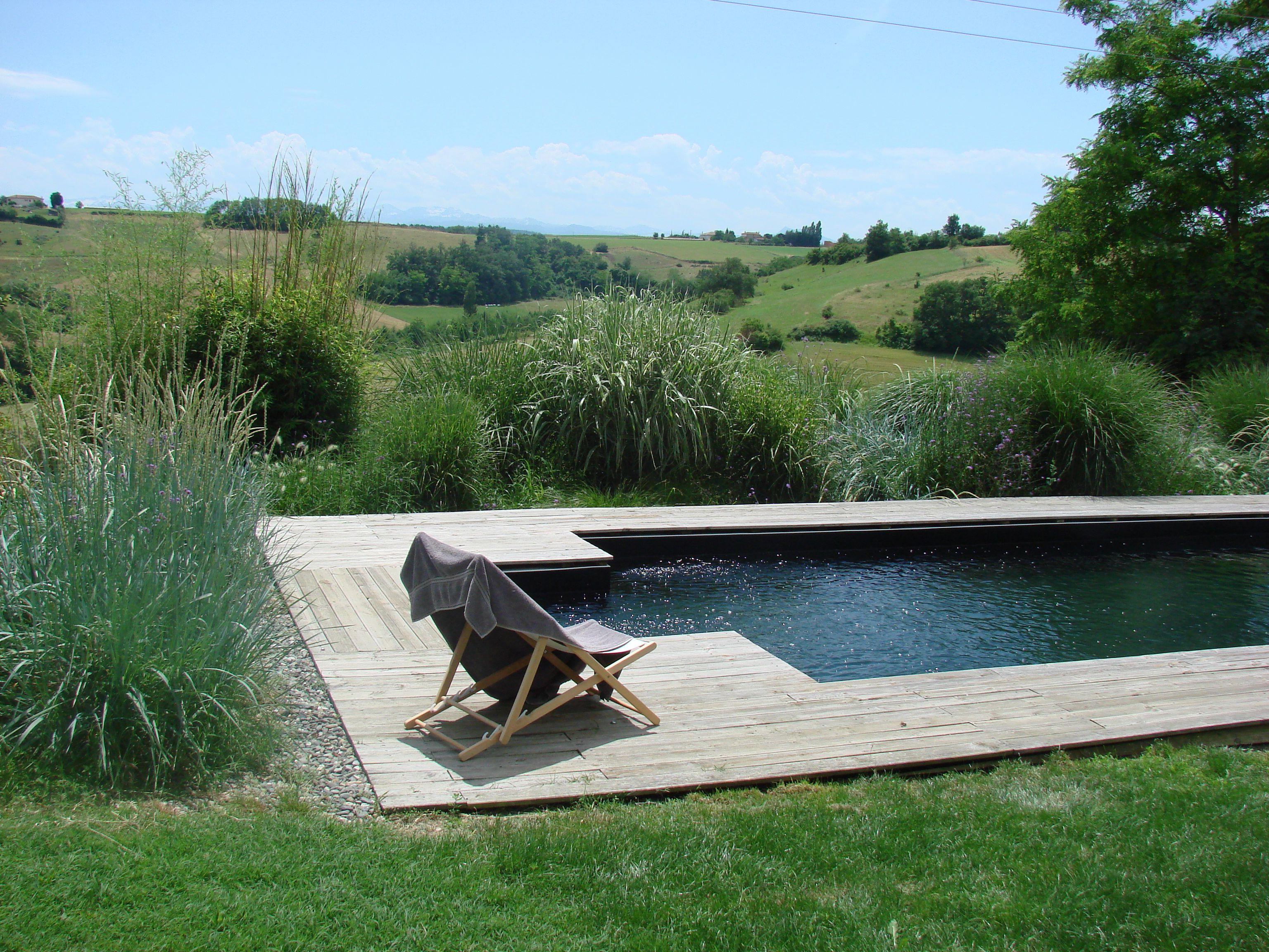 Pin by Mel B on La Ranchera | Swimming pool designs, Pool designs ...