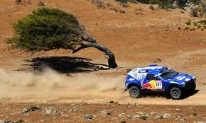 Dakar Rally (in South America) Looks like this tree is coughing and sputtering from the dust kicked up by the race!