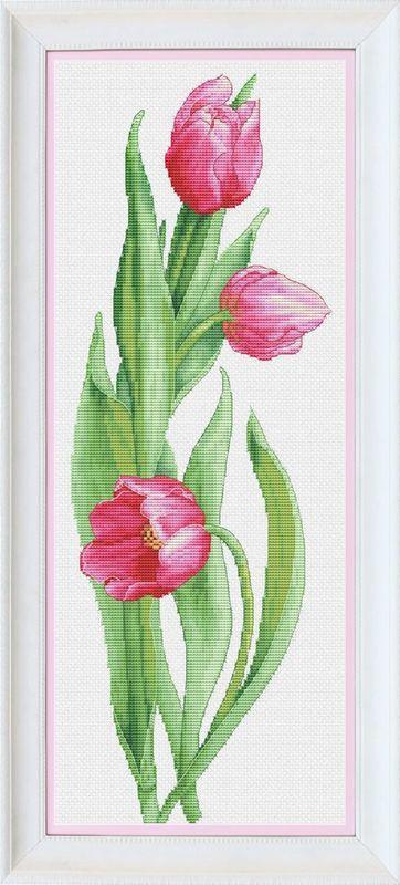 Розовые тюльпаны VN-050  95fbb3815d73b