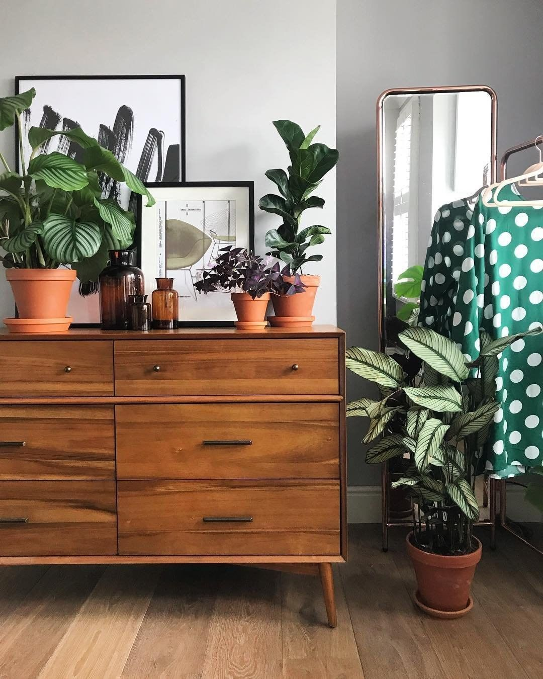 West Elm On Instagram Fairtrade Plants Happy Friday The Mid Century Dresser Is Mid Century Dresser Living Room Transformation West Elm Furniture