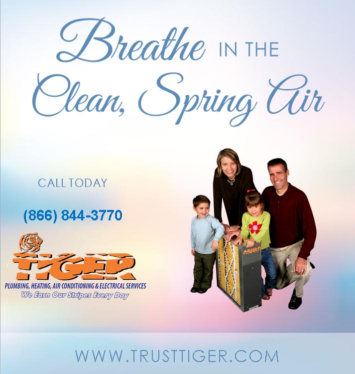 """6 Ways to Defeat Allergy Season this Spring"" NewBlog"