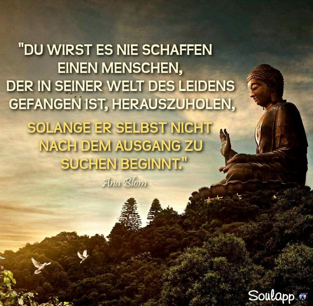 Wahre Worte Dementsprechend Ist Meine Familie Schwer Wollen Sich Nicht Verandern Entwicke Tiefsinnige Spruche Buddhistische Spruche Lebensweisheiten Spruche