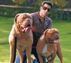 Salman Khan donated this photograph of him and his dogs to raise funds for BSPCA and promised them his full support.