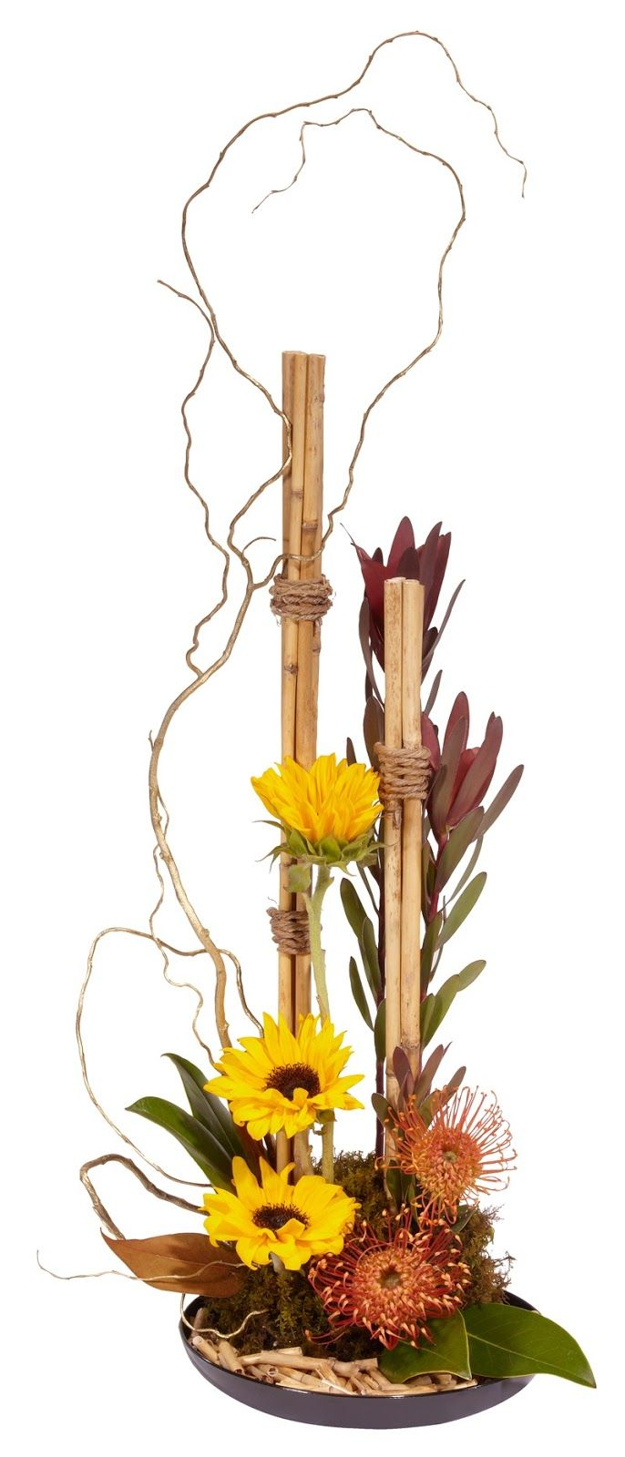 Pin by Judy Swortz on creative floral | Pinterest | Floral designs Club Creative Design Gardens on creative books, creative landscape architect, creative container gardens, creative pool landscape, creative trees, creative vertical gardens, creative herb gardens, creative rock gardens,