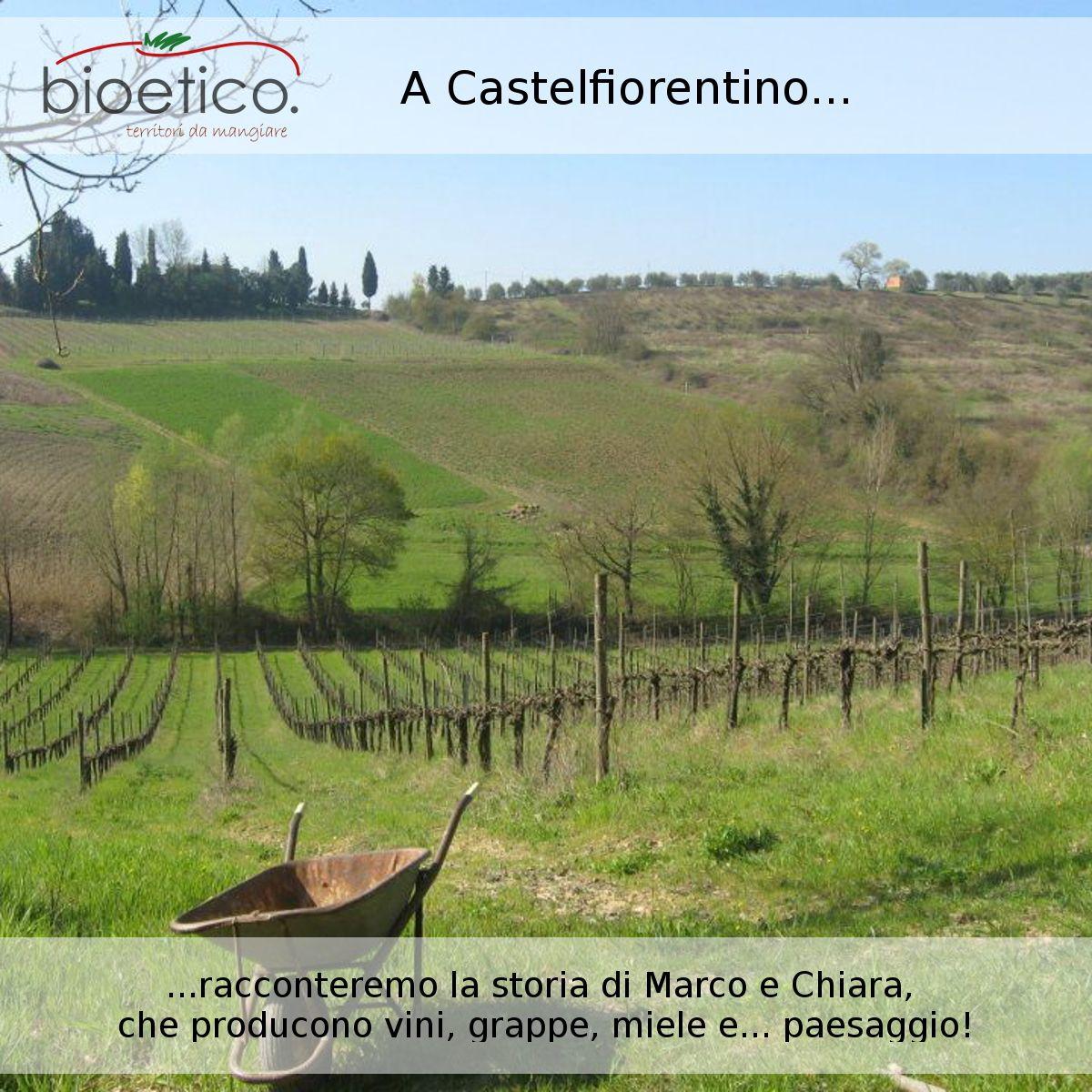 Marco e Chiara, a #Castelfiorentino producono #vino, #olio, #grappa, #miele e... #paesaggio! #bioeticonet racconterà le passioni di tanti #agricoltori, imprenditori che producono #cibo e tutelano #paesaggio e #territorio.
