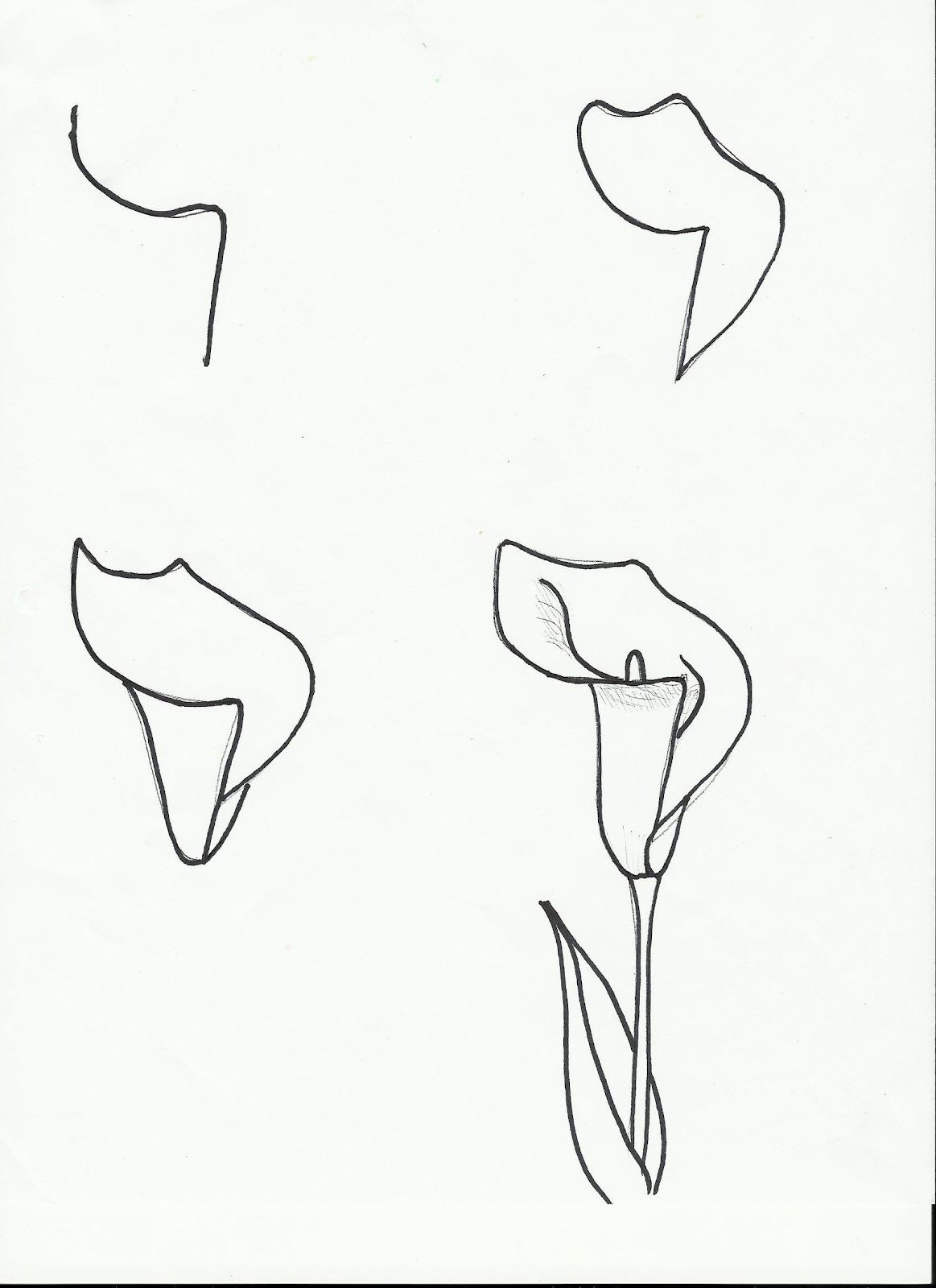 Art class ideas drawing a flower drawing pinterest flower