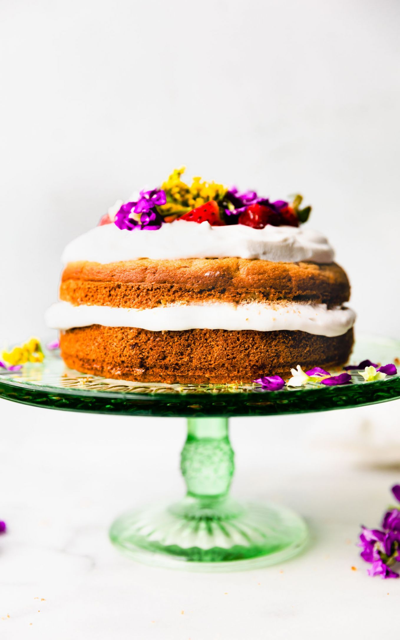 Recipes Cakes For Dogs cakesfordogsrecipesuk
