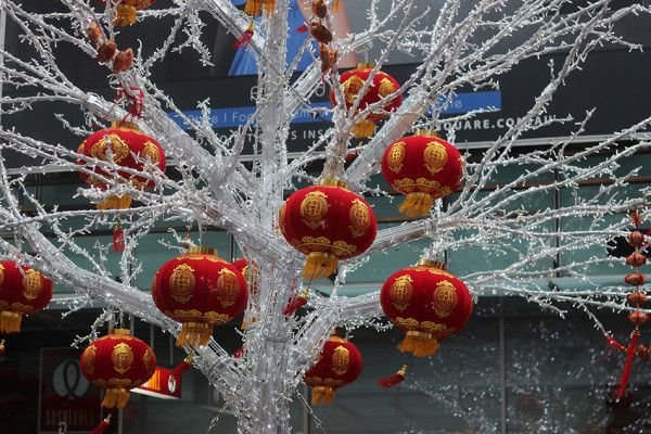 Happy Chinese New Year! http://www.visiontimes.com/2016/02/05/get-ready-for-chinese-new-year-with-these-pre-festival-preparations.html