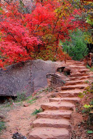 Stairway to nowhere Zion National Park ,Utah