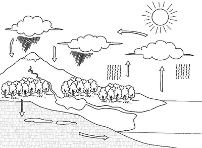 Water Cycle Coloring:Child Coloring and Children