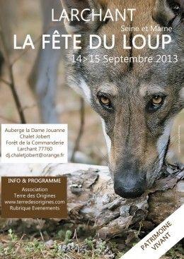 La Fete Du Loup 2013 A Larchant Seine Et Marne Foxoo Loup Chef D Oeuvre Art Gothique