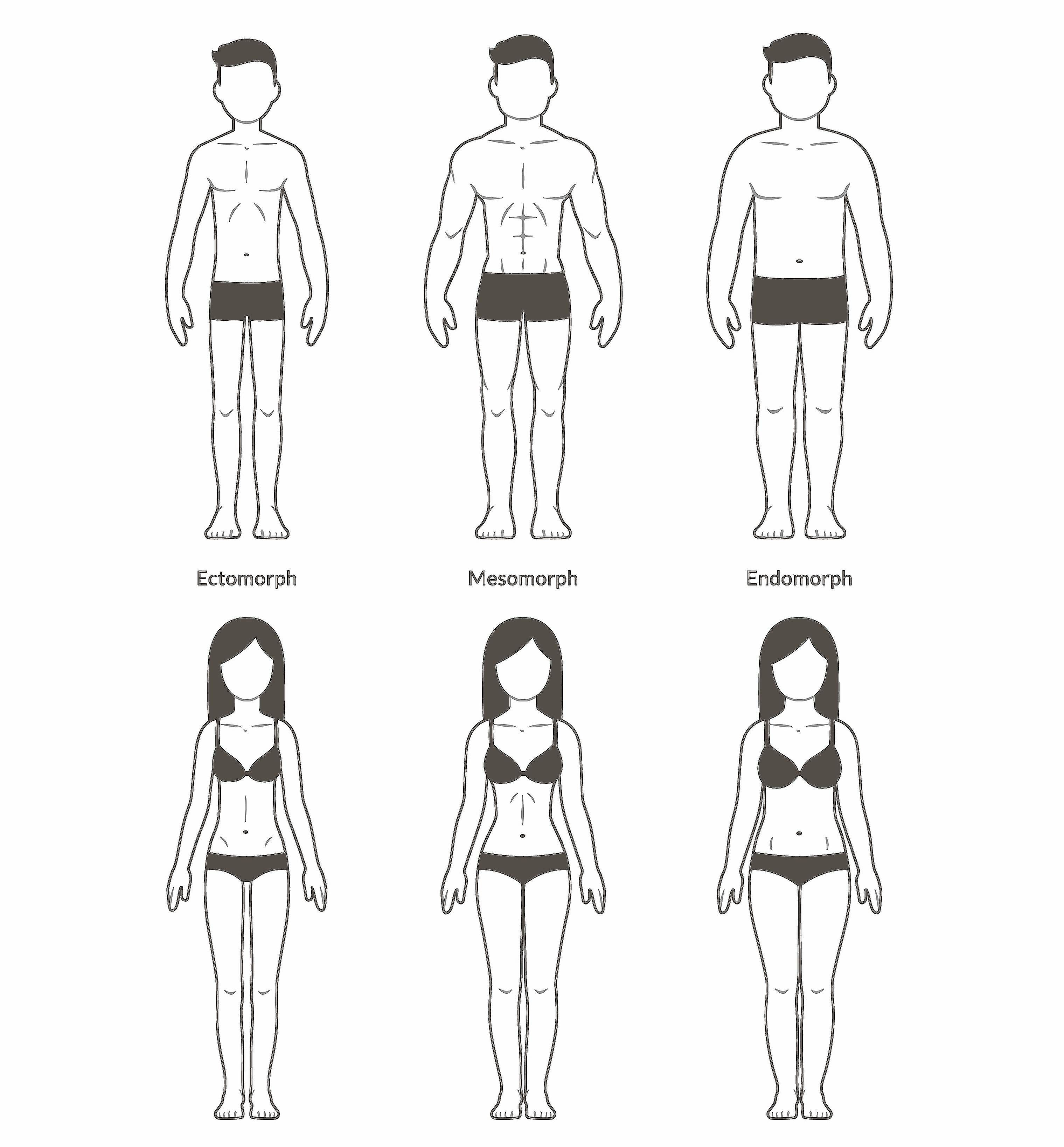 image of different body type