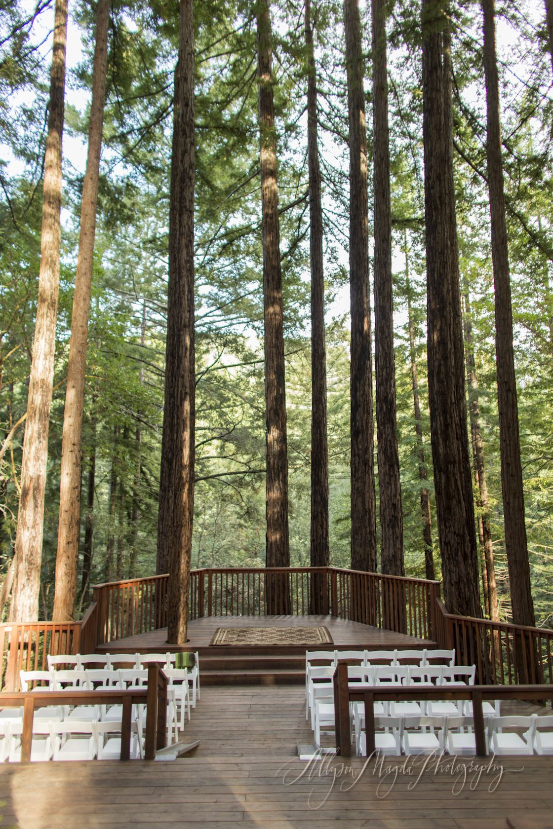 amphitheatre of the redwoods at pema osel ling wedding and events venue santa cruz