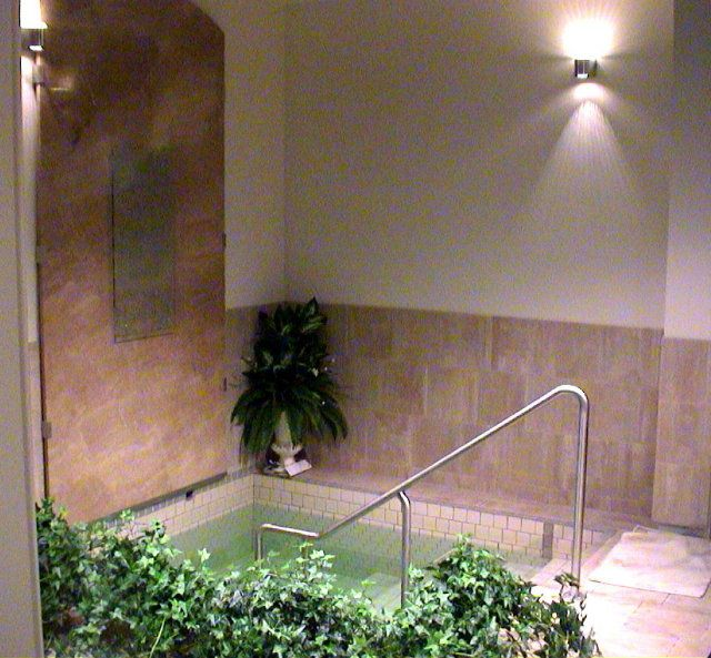 Dryan family mikveh palo alto ca the ritual bath itself - Palo alto swimming pool san antonio ...