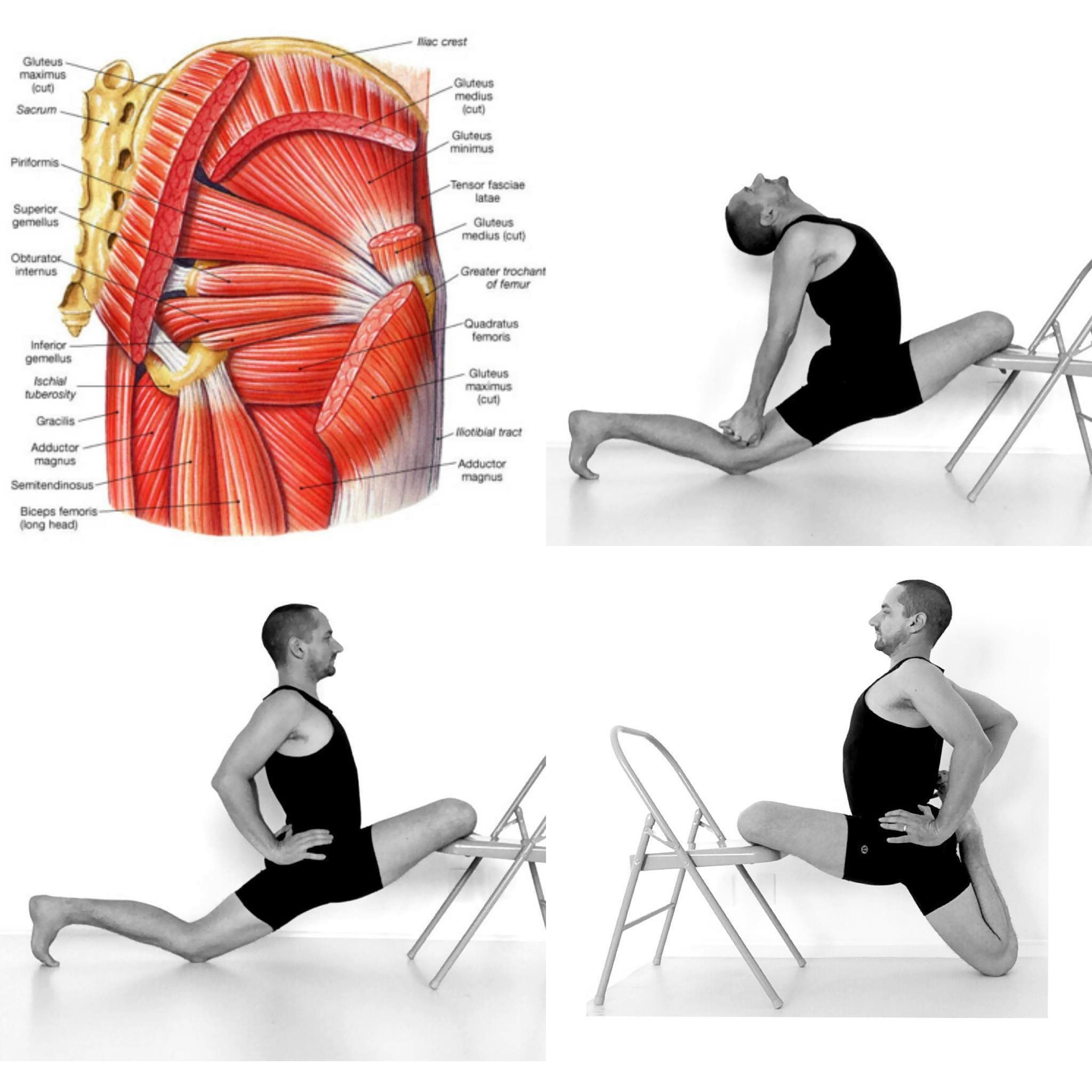35 muscles are involved in this Yoga movement. The Posterior Chain ...