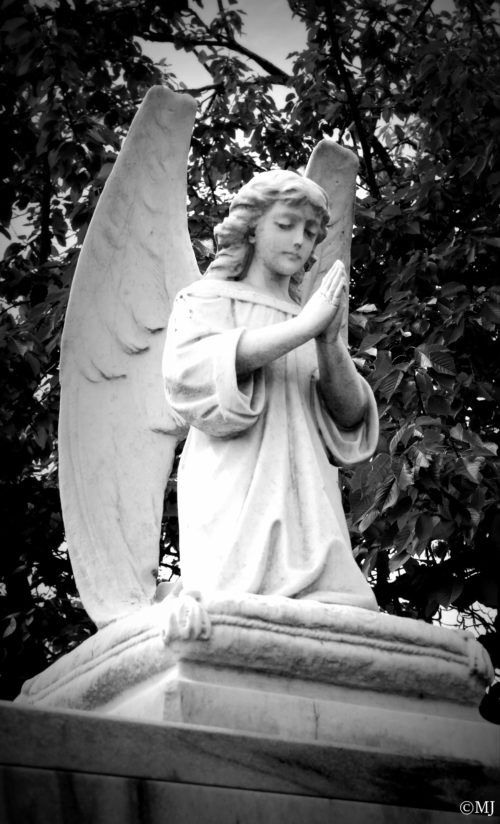 Why we love black and white photos Cemetery, Angel and Angel statues - halloween statues