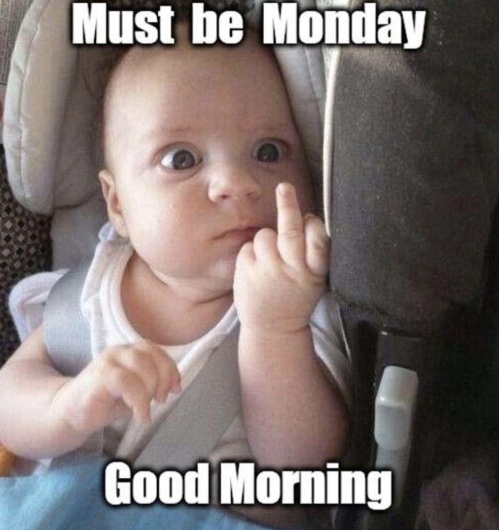Pin By April Addington On Monday Monday Funny Monday Memes Good Morning Meme Monday Memes