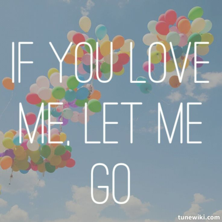What song has the lyrics if you love me let me go
