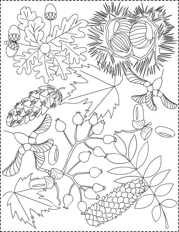 D @ Treppe ... Bildung »Blog Archive» Gemälde für den Herbst | tree ...