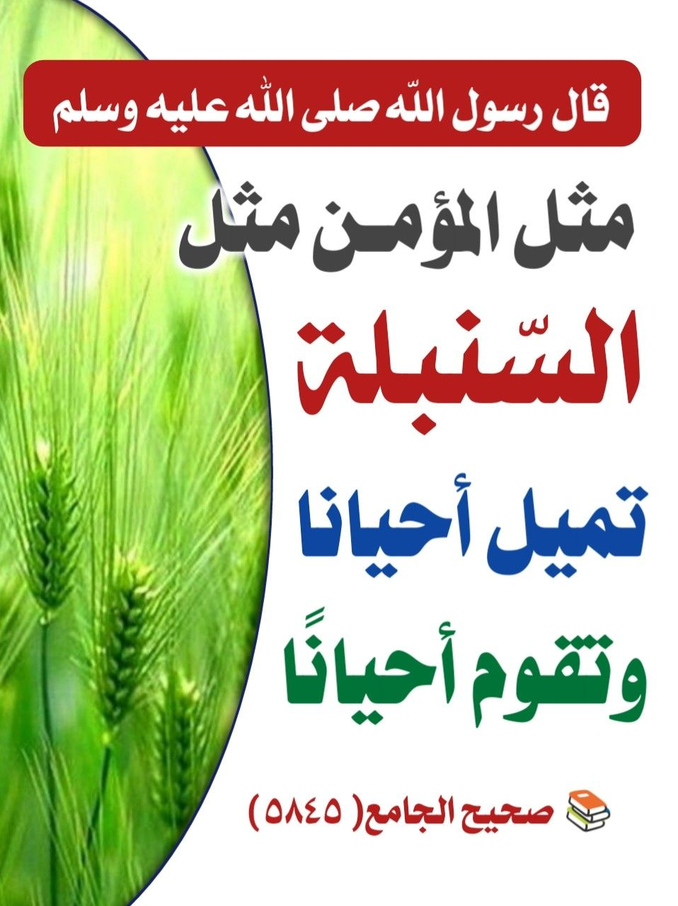 Pin By أدعية وأذكار Adiyaa W Azkar On Apprendre L Islam Hadith Islamic Quotes Ahadith