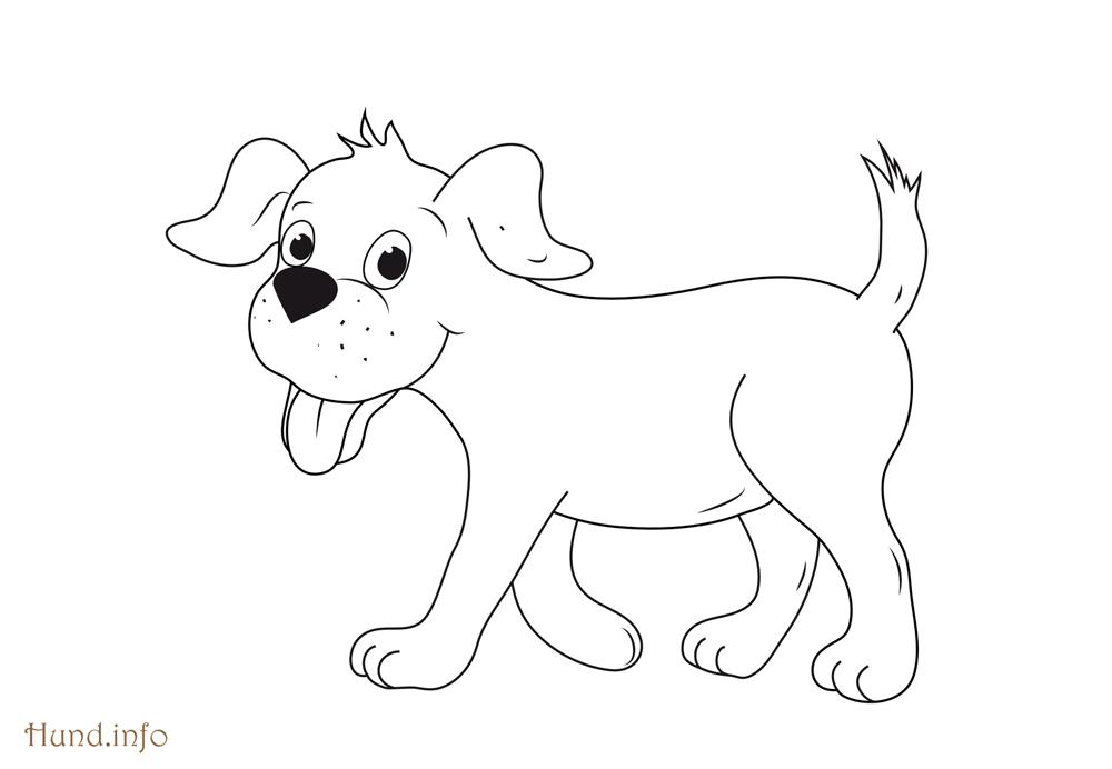 Hund Ausmalbilder Hund Malvorlagen Kostenlos Zum Ausdrucken Ausmalbilder Hund Vorlage