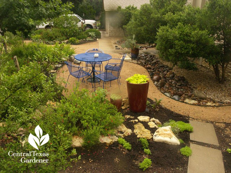 yard no grass | Central Texas Gardener Blog » Blog Archive ...