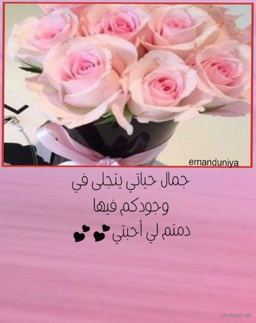 رسائل أحبتي صور Rose Flowers Plants